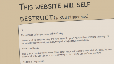 "Screenshot of ""This Website Will Self-destruct (dot) com"""